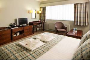 Picture of Superior Suite